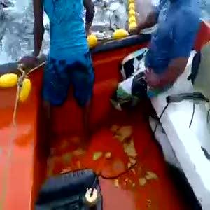 Balıkçılardan ilginç avlama tekniği