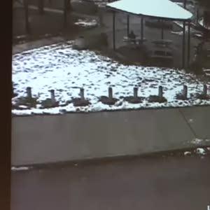 ABD'li siyahi genç polisler tarafından böyle vuruldu
