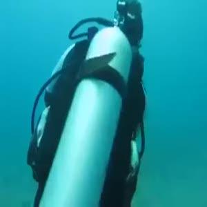 Balon balığı böyle kurtarıldı