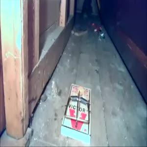 Paranormal sincap kameraya kafa atıyor
