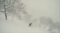 Kayakçı ağacı görmeyince