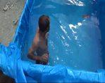 İnşaat işçileri kamyon kasasında yüzdü