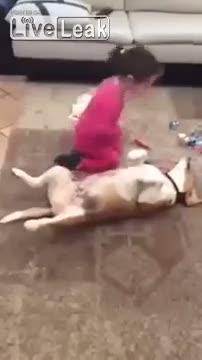Minik kız köpekle doktorculuk oynuyor