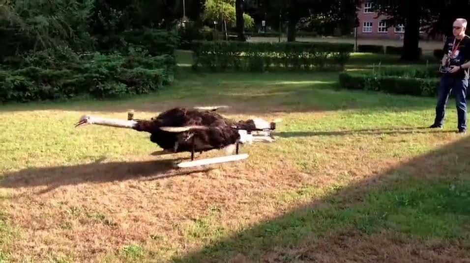 Ölü hayvanları drone yapıp uçuruyorlar!