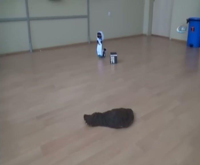 """Bu robot """"Hacı Robot"""""""