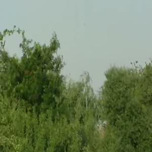 Cumhurbaşkanı ve Başbakan 16 kişinin hayatını kaybettiği tanışık köyünü ziyaret etti