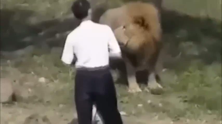 Aslanlara meydan okuyan adamın sonu