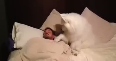 En tatlı uyandırma servisi