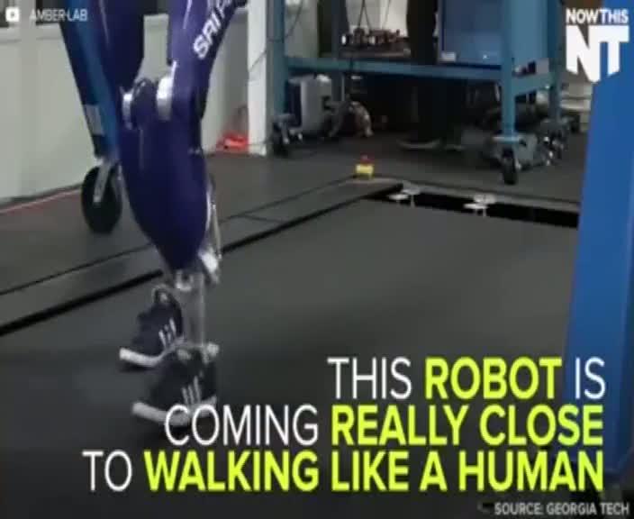 İnsan gibi yürüyen robot şaşkınlık veriyor