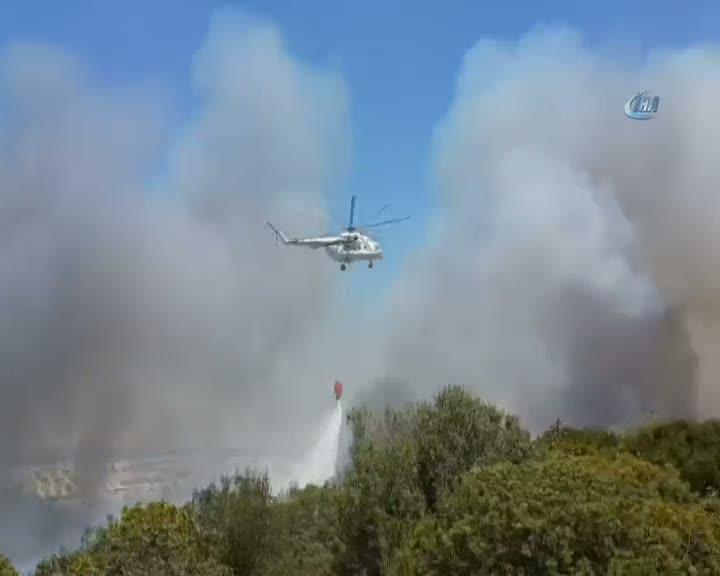 Milas'da makilik alan alev alev yanıyor