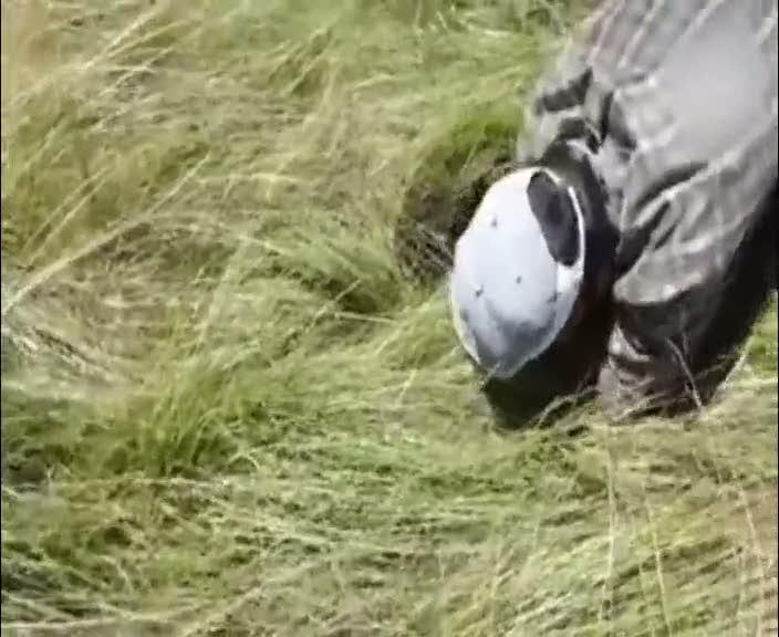 Çoban deliğe düşen koyunu böyle kurtardı!
