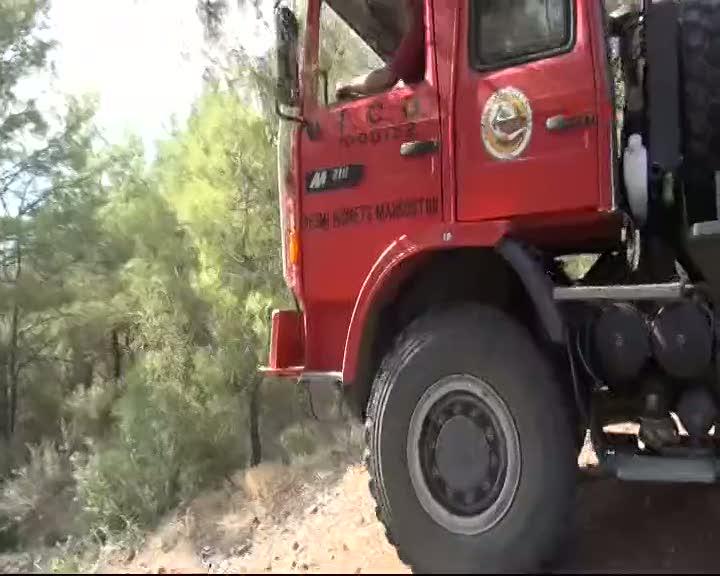 Osmaniye'de 10 hektar kızılçam ormanı yandı