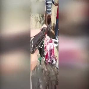 Polisten eşek kesip satan kasaplara inanılmaz ceza