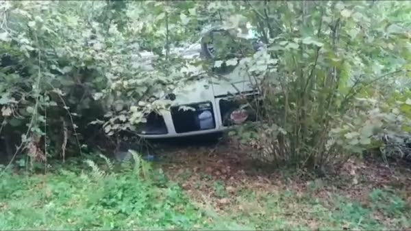 Otomobiliyle fındık tarlasına uçan sürücü ağır yaralandı