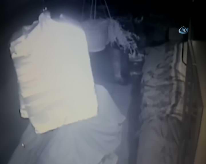 Manav hırsızlığı kamerada