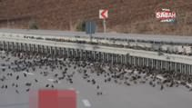 Soğuk vurunca binlercesi kara yolunu kapattı...