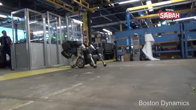 İşte yetenekli taşıma robotu: Handle!