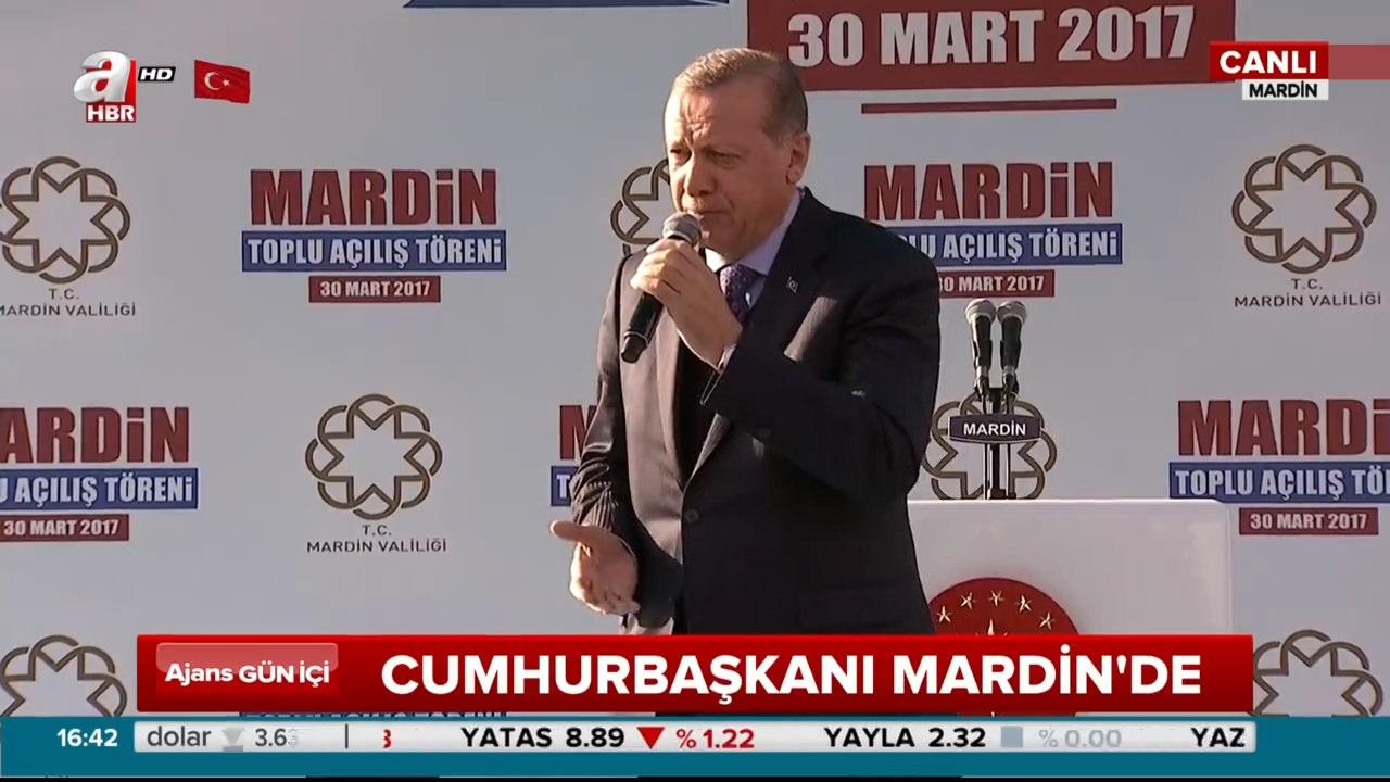 Cumhurbaşkanı Erdoğan Mardin'de toplu açılış töreninde konuştu